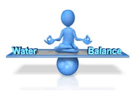 Do you have water Balance sheet of your factory?