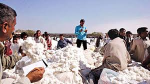 TexSnips: China is Cotton Deficit