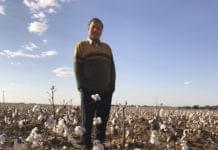 China and Demand in the Cotton Equation
