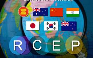 The fear about RCEP destroying domestic industry is not without reason.
