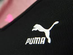 India is driving Puma's global growth: CEO.