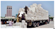 World Export of Cotton Yarn to Decline