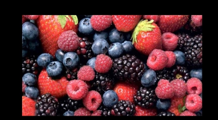 BERRY ENHANCING MELTBLOWN CAPACITY IN SOUTH AMERICA
