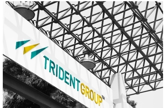 Trident Group FY20 revenue of Rs 47,277 million