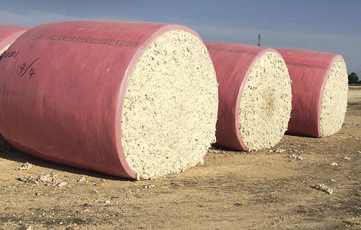 Cotton's First Bale for 2020 Delivered on June 18