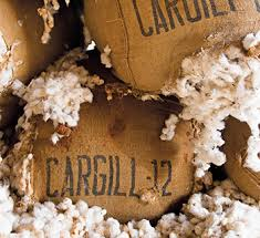 Hank Gray Joined Cargill Global Cotton Business