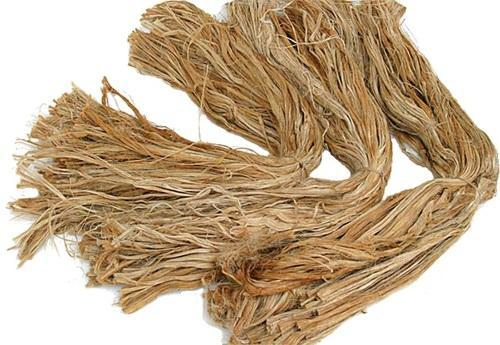 Jump in Global Export of Jute and Other Textile Bast Fibres