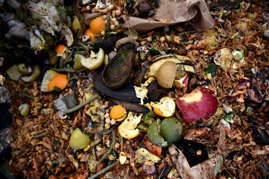 A new 'OK Compost' certified label material for thermal applications from Avery Dennison