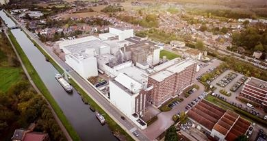 BENEO invests €50 million in increasing capacity at Wijgmaal rice starch plant