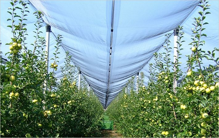 RECENT DEVELOPMENTS IN AGROTEXTILES IN 2017/2018