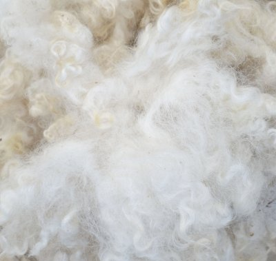 State Fair's 'Make It With Wool' Contest and Virtual Shop