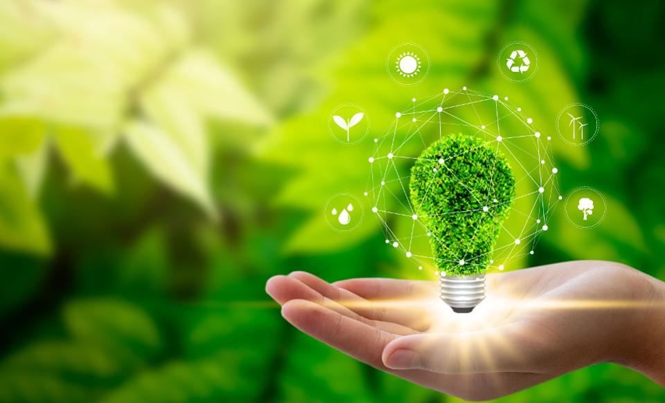 Project plan B, a step towards promising sustainability