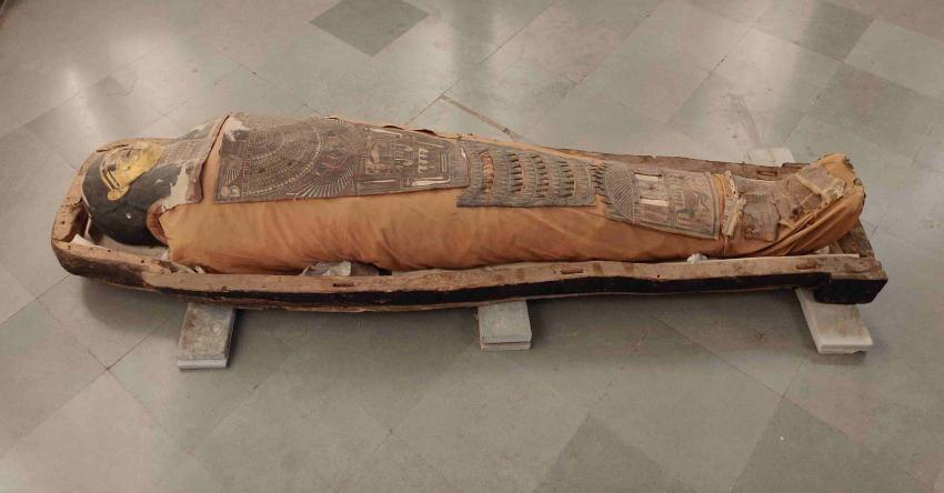 2300-year-old Mummy Saved From Damage As Rainwater Enters Jaipur's Albert Hall Museum