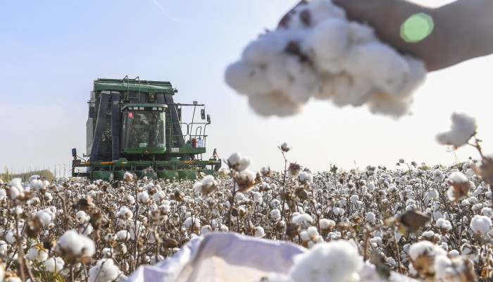 US blocks cotton, apparel, hair products imports from XUAR