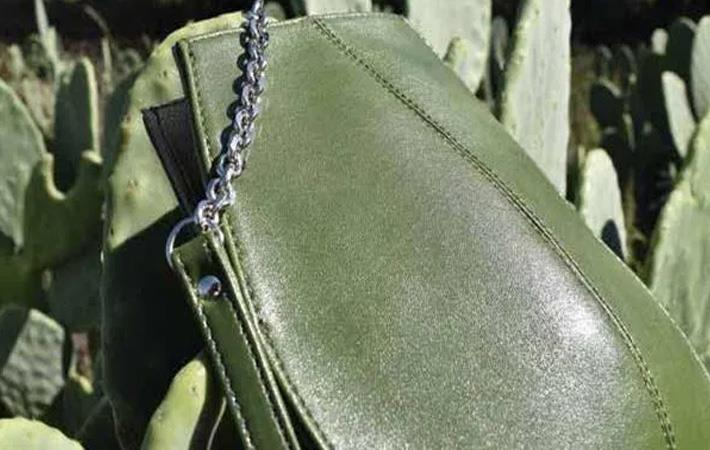 Getting adequate cactus for leather not an issue: Desserto05 Aug '20