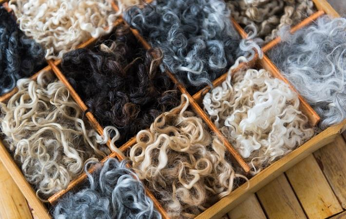 Price depreciation slows at Australian wool auctions