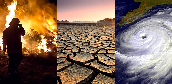 To the Irreversible Climate