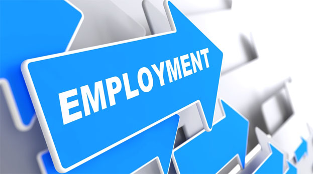 Employment in the Textile Industry.