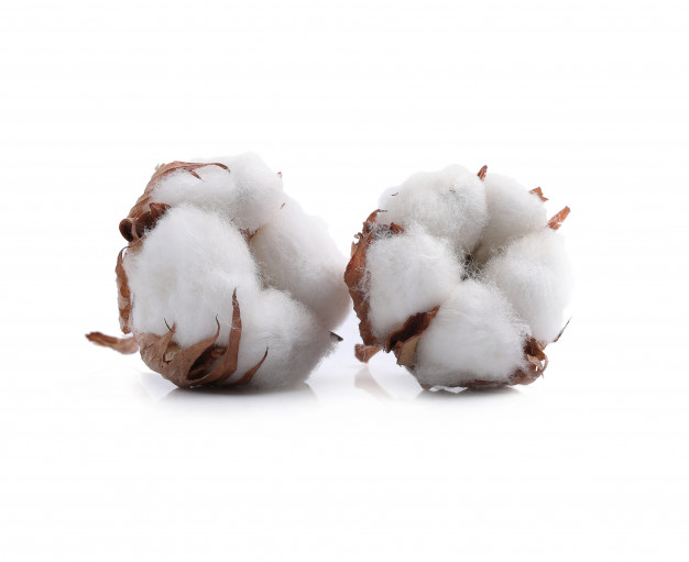 Imports of Indian Cotton Opposed By APTMA