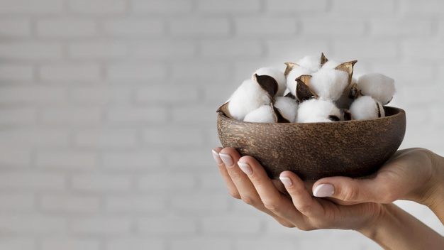 DBS unveils pilot programme in India on organic cotton.