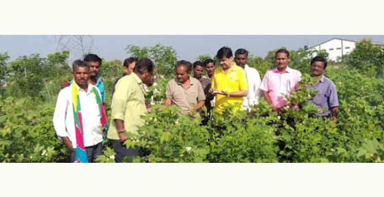 Sustainable Agriculture For Benefiting Environment, Economy & Industry