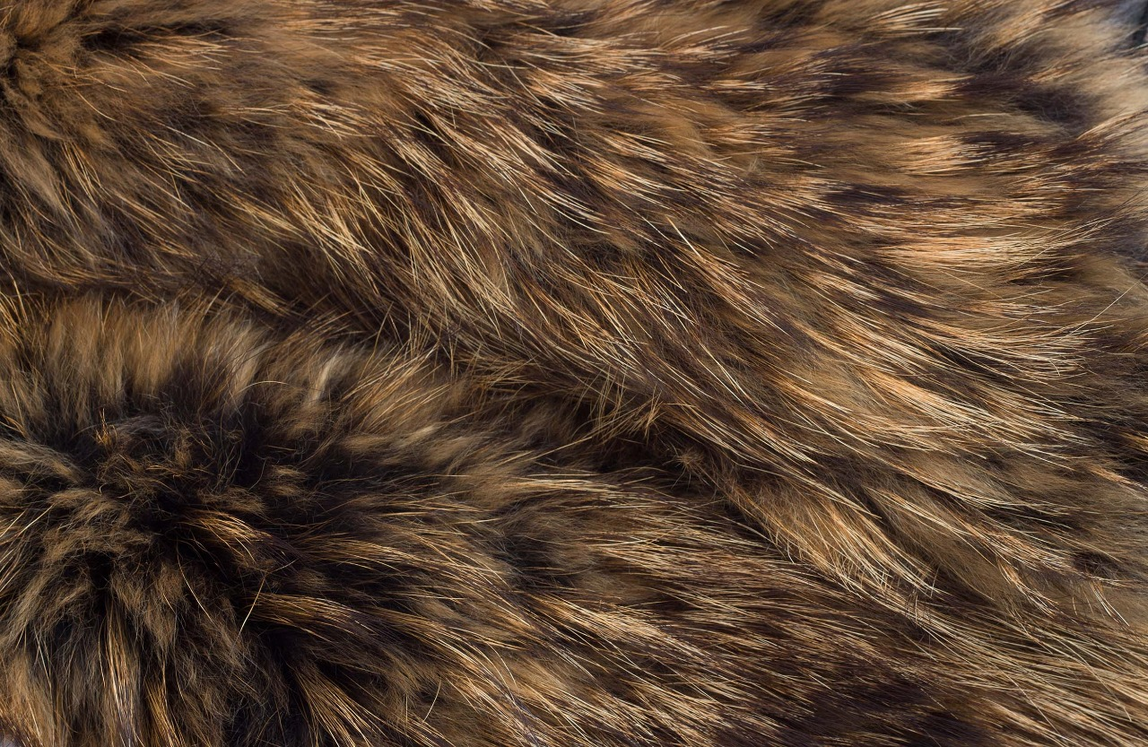 UK Government Launch 'Call For Evidence' on the Fur Trade