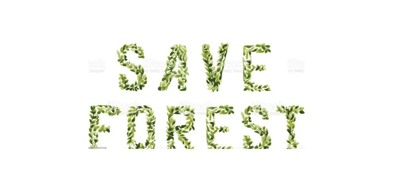 400: Rapidly Transforming the Global Fashion Supply Chain to Save Forests