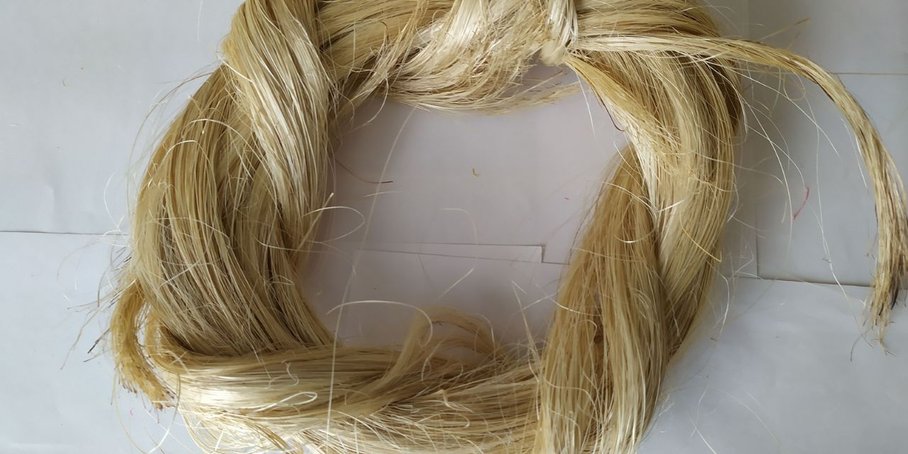 By 2028, the global abaca fibre industry is expected to be worth $1.7 billion